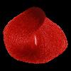 واریاسیون-قرمز0.88